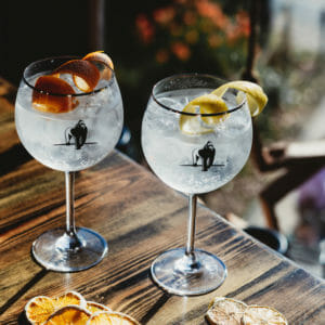 Silverback Mountain Strength Gin Served with twist of orange and twist of lemon - Gorilla Spirits Co.